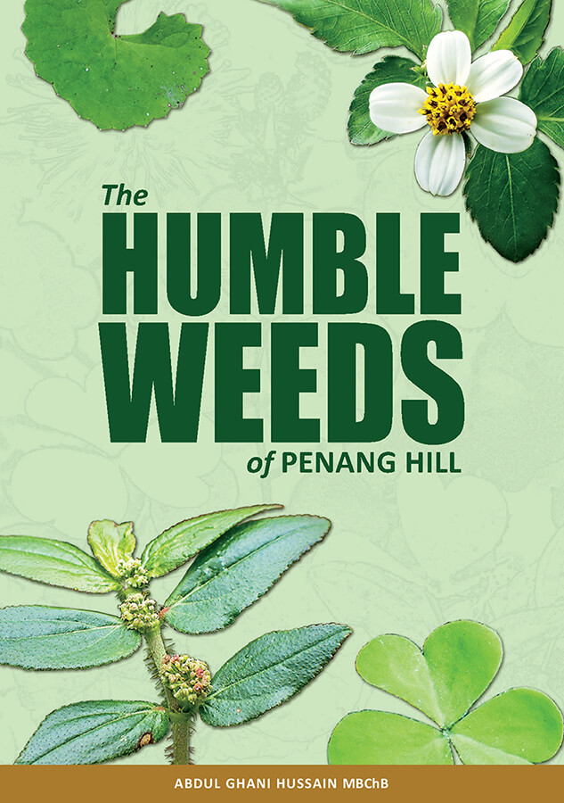 The Humble Weeds of Penang Hill